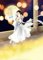 waltz in a White dress by selinmarsou