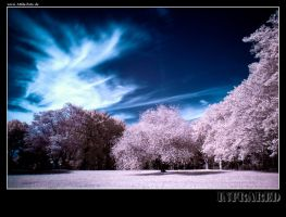 infrared by prokyron