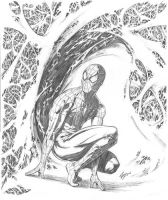 Spiderman by airold