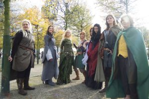 Lord of the Rings group by mtani