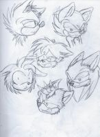 Mobian head sketches by SonicTheDerp