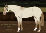 PD Fast N Famous - AQP by painted-cowgirl