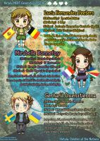 Hetalia NEXT Generation Profile 2 by BlueStorm-Studio