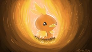 Torchic campfire by williamcjones48
