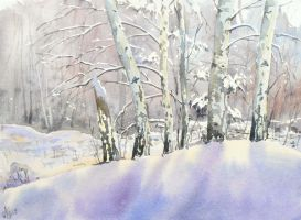Birch-trees in winter by mashami
