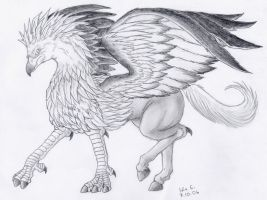 Hippogriff by Lintufriikki