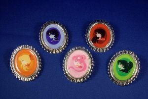 Sailor Moon Cameo Broach by pinkplaidrobot