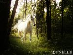 .lynelle. by luckydesigns
