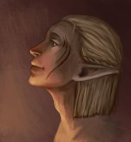 More Zevran by R-r-ricko