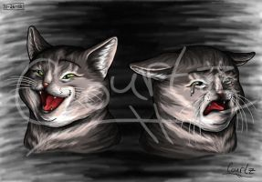 Theater Cats by LunaKitty2006