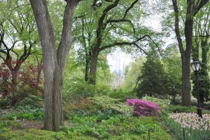Central Park Stock 52 by FairieGoodMother