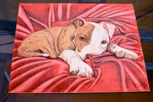 Red Nose (Old Drawing new photo) by Jlynntaylorart