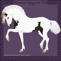 Winter Import 738 by Psynthesis