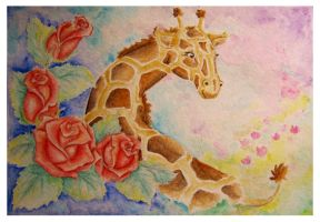 Giraffe b-day card by Coccis