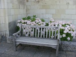 Bench by fairling-stock