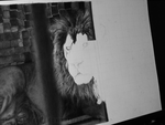LION WIP 3 by stonedsour887
