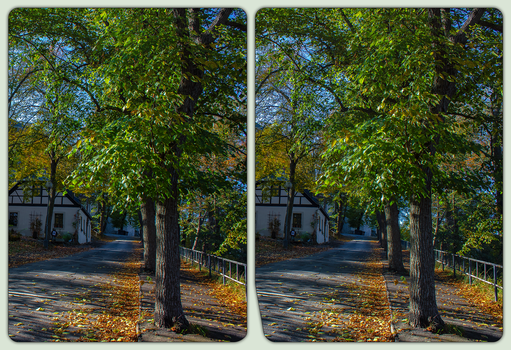 Burg Mylau 3-D / Stereoscopic / CrossView / HDR by zour