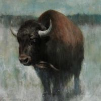 Bison, no bull by RandallFischer