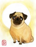 Pug by thundercake