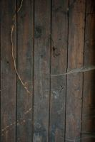 Texture wood by DreamArt-Stock
