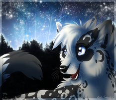 Thorin and a Starfield by ThorinFrostclaw