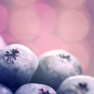 Blueberries by Alyphoto