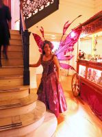 Edwardian Ball 2014 Fairy Gown by FaeryAzarelle