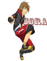 Sora 3Ds by fireykaigurl