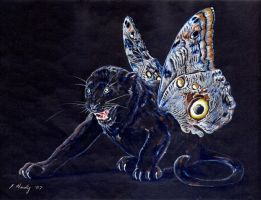 Black Butterfly Panther by ladystonehawk