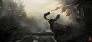 Forest road by JonathanLAM