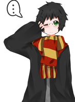 HP - Harry by Nani-Mi