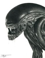 Alien in Graphite by crono985