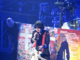 Green Day 14.07.09 -7 by guitarlover333