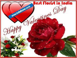 Send Flowers And Gifts In Valentine Day 2016 by srivastavanshu111