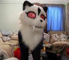 kirala fursuit head video by ThoronINC