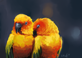 Sun Conure Speedpaint by Gpotious