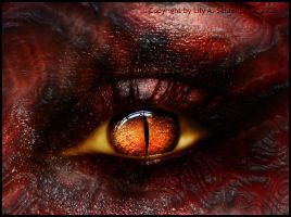 Devil's Eye by Lilyas
