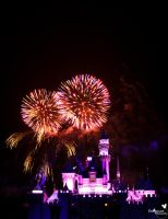 Alice in Firework Land by ExplicitStudios