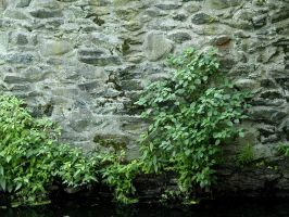 Slater Mill's Wall by 3dmirror-stock