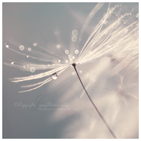 Angel sight by JunnyPhotography