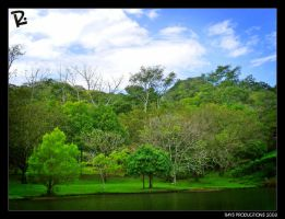 GREEN PEACE by RONNYYAXPHOTO