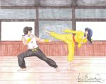 Wild Horse Reborn Ranma and Akane Sparring by TheRealKyuubi16