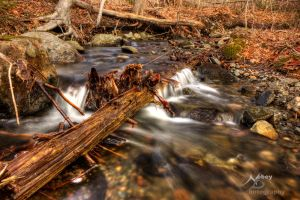 HDR Spring Stream 4 by Nebey