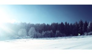 winter view 3 by Artush