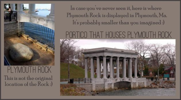 Plymouth Rock banner by Linche