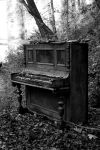 Forgotten melodies by shelovessnow