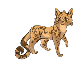Leopardstar by collie-rado