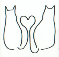 Love Cats by acasas