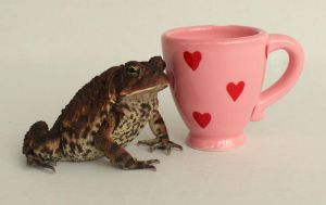 Have A Cup of Love by PaganFireSnake