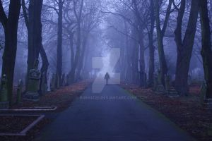 Into the Fog by Rob93z20